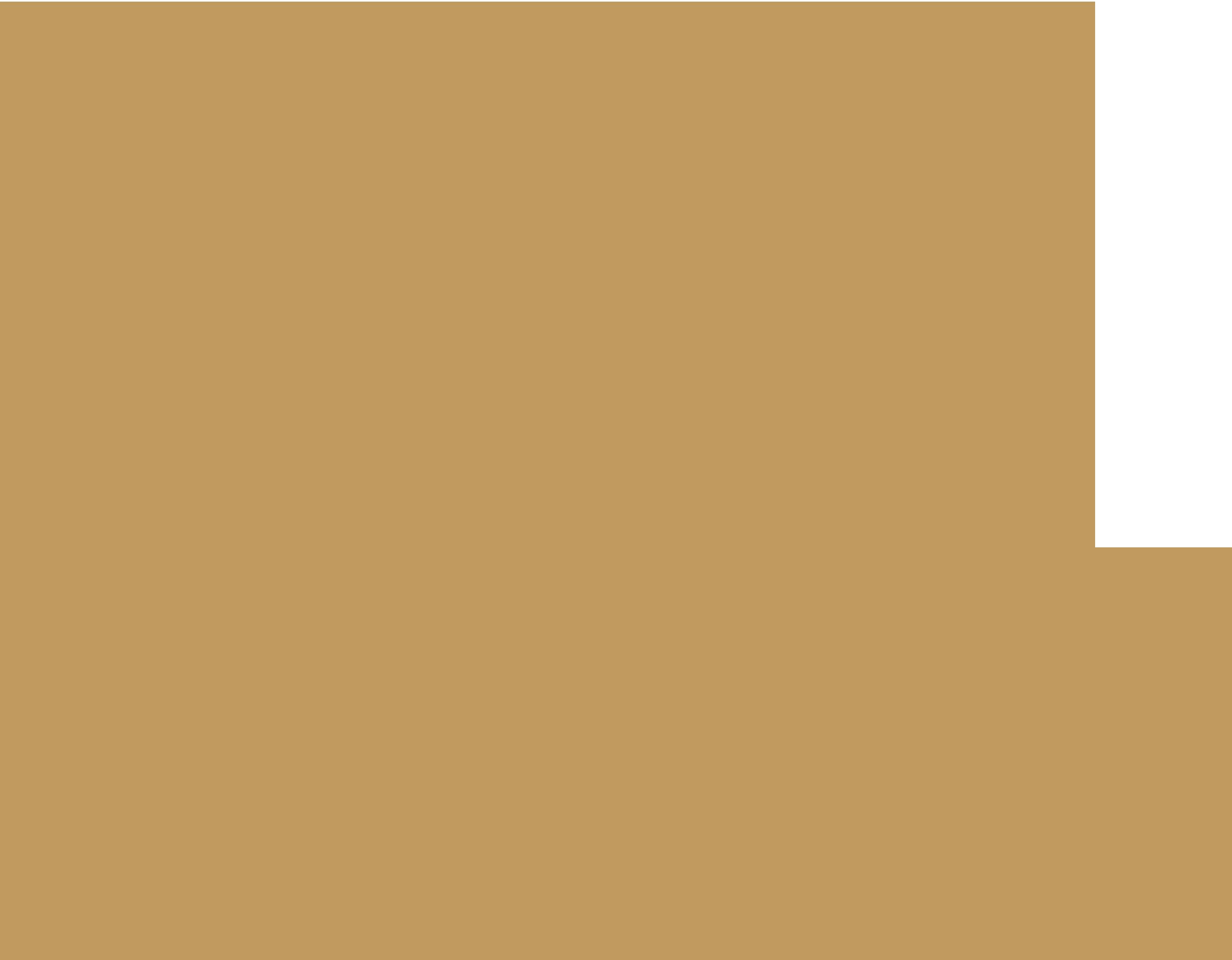 ВЕРИЖИЦА Логотип